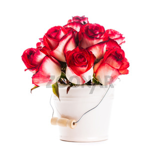 roses in the bucket