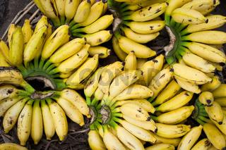 Fresh bananas at market place