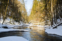 The River of the Year Argen in Winter