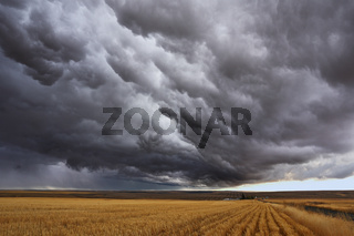 Thunderstorm above fields after harvesting.