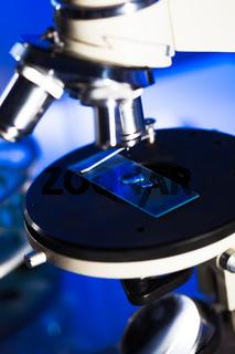 Microscope glass