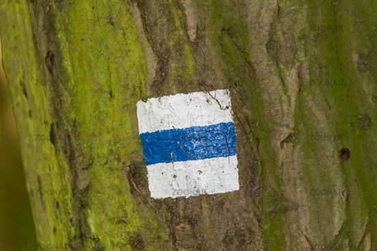 Trekking sign on a tree