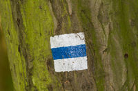 Trekking sign on a tree