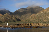 Kueste von Cedros Island, Cedros Island