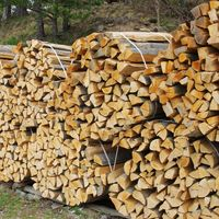 Holzstapel - stack of wood 47