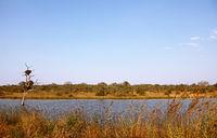 the Transport Dam, landscape at Kruger NP