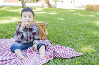 Young Mixed Race Boy Sitting in Park Near Picnic Basket