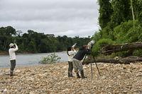 Bird photography at the bank of  Tambopata river