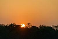 Sunset on Chitwan jungle