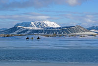 Horse riders on lake myvatn