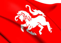 Flag of Twente