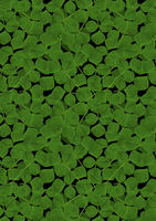 Background from the scattered randomly leaf clover