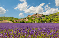 City on a hill with a lavender field