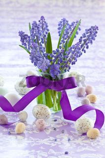 Frische Traubenhyazinthen in kleiner Vase