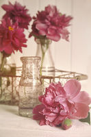 Beautiful peony flowers with glass bottles on tabl