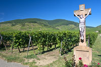 Crucifix in the vineyards of Kientzheim, France