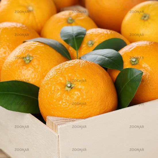 Orangen Früchte in Kiste mit Textfreiraum