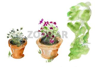 Isolated garden pots