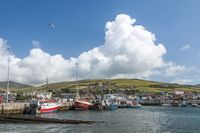 Fishing harbor of Dingle