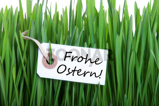 A Label with the german Words Frohe Ostern which means Happy Easter in Grass as Background