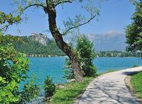 Lake Bled,Slovenia
