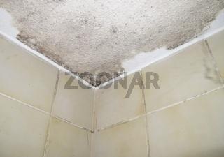 Feuchteschaden in einem Badezimmer