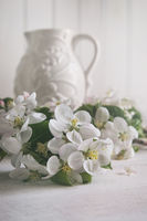 Still life of apple blossom flowers with jug in ba
