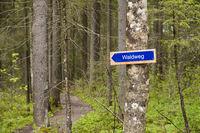 Sign Waldweg (forest path)