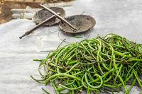 Organic yard long beans at asian market