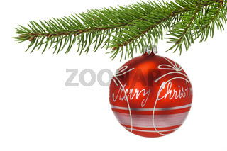 isolated christmas ball on branch