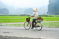 Vietnamese woman at conical hat on bicycle. Ninh Binh, Vietnam