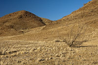 landscape in the Richtersveld Transfrontier Park