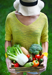 Woman with fresh vegetables in the box in her hands. Close up