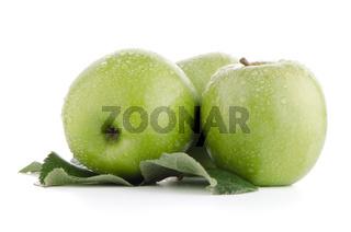 Three fresh green apples