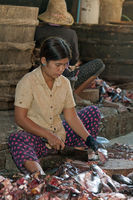 Woman cleaning fish, Battambang, Cambodia