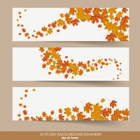 Three Autumn Banners Colored Background
