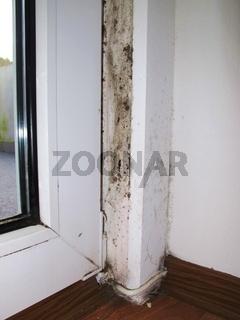 Schimmelbefall an einer Fensterleibung