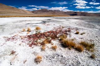Indian Himalaya landscape with salt lake Tso Kar