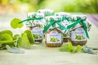 Glasses with Nettle Pesto and decoration
