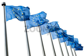 European Union flags isolated on white