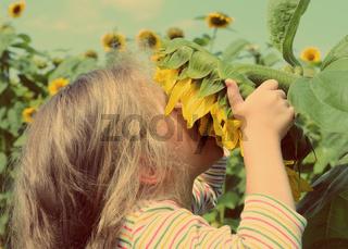 little girl smelling sunflower - vintage retro style