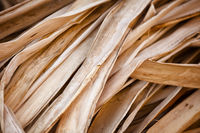 Dry reed - the material for the production of souvenirs.