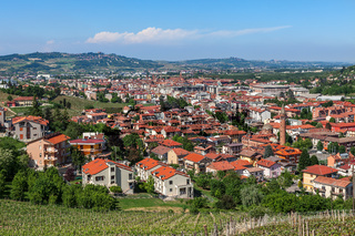 Vineyards and town of Alba, Italy.