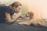 young woman and her dog are each other on the floo
