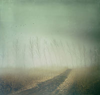 Country path in autumn fields with vintage texture