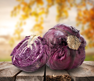 Purple cabbage on table