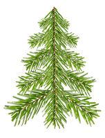 Tannenbaum aus Tannenzweigen vor weiß