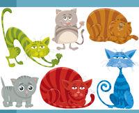 funny cats cartoon illustration set