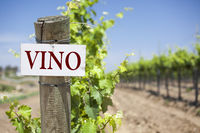 Vino Sign On Vineyard Post