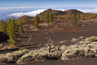 Kraterlandschaft des Teide Nationalparks, Teneriffa